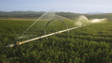 Sprinklers irrigate an agricultural field off Highway 33 in Ventura County near Cuyama, California