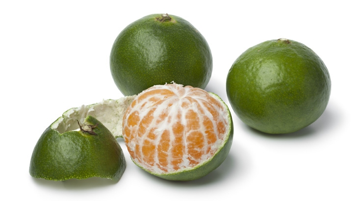 Satsumas and other easy-peelers, as well as oranges, initially grow as a green fruit but turn orange as nights cool