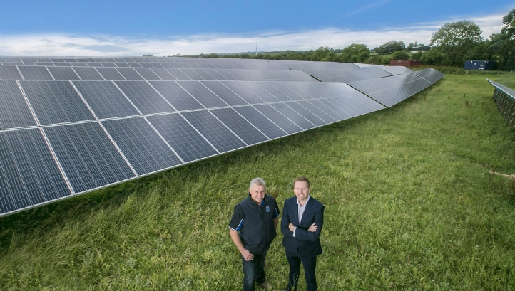 The 5MW solar farm is co-located with Dale Farm's Dunmanbridge cheese facility. Photo: Brian Morrison