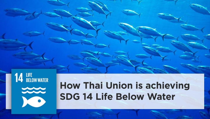 Thai Union relies on the oceans for its business and is recognised widely as a leader for its approach to sustainability