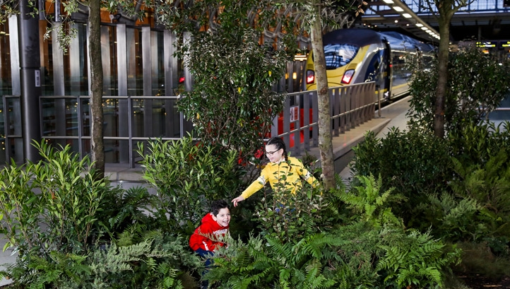 Eurostar has pledged to plant a tree for every train service that it operates across its routes
