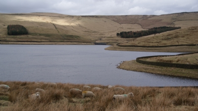 Water resources infrastructure policy due this Autumn