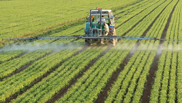 The report warns that the plants, insects and organisms considered crucial to food production are in 'steep decline'