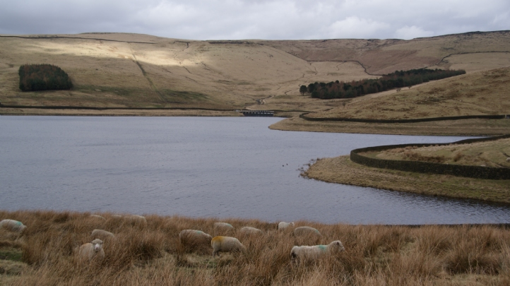 Pictured: Castleshaw Upper Reservoir, Oldham