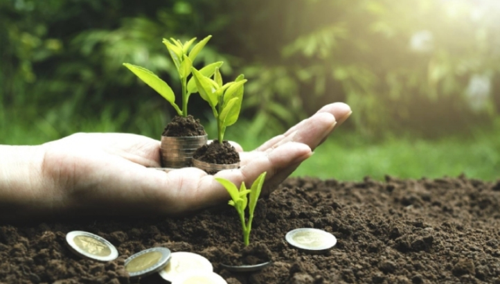 H2 of 2018 was widely regarded as a difficult period for green finance, but the market is showing signs of resurgence