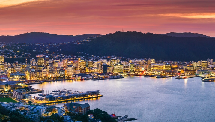Wellington city and harbour from Mount Victoria