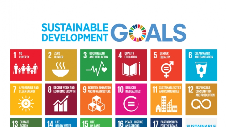 The report is the latest in a string of publications highlighting national and business-level challenges in aligning with the SDGs