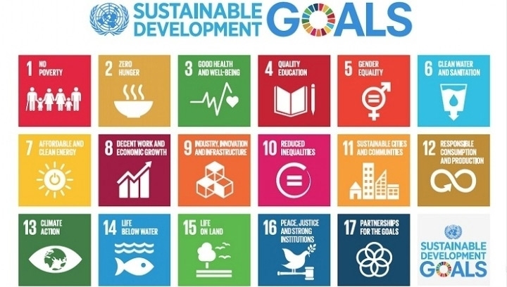 the UK is only performing well on 24% of SDG relevant targets