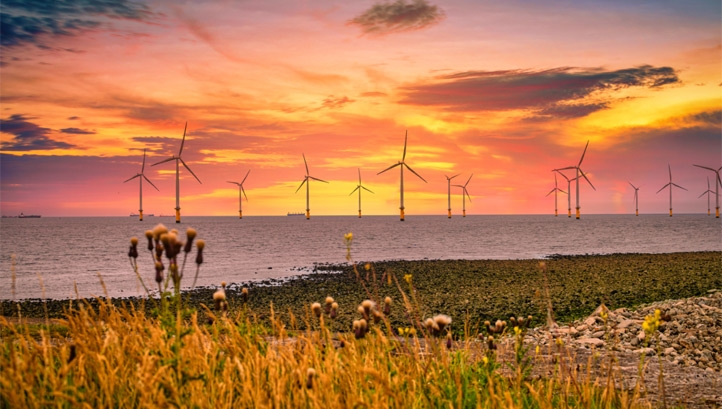 In total, wind power generated 30% of the UK's electricity in the first quarter