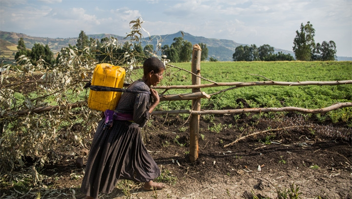 Pictured: A health centre worker carrying water in Ethiopia. Image: WaterAid/ Genaye Eshetu