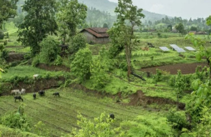Common offsetting projects include tree planting and other nature restoration or creation, as well as helping communities to access renewable electricity or clean cooking fuel. Image: VCMI