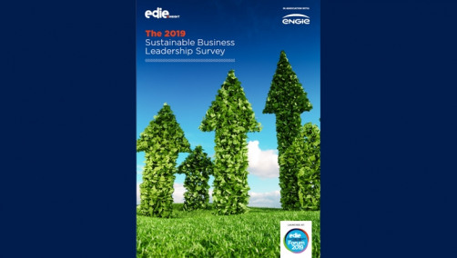 "The report is based on the findings of an extensive survey of ""250"" sustainability professionals about the various challenges, drivers and opportunities related to sustainable business leadership"