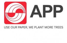 Aida Greenbury, Asia Pulp & Paper