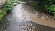 Samples taken from the river found traces of oil at least three miles downstream and more than 40 dead fish were found