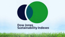 Launched in 1999, the DJSI was the first global index to track leading sustainability-driven companies