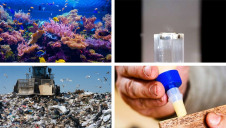 Featured innovations include reusable glue, bio-based plastics and reef-protecting screens