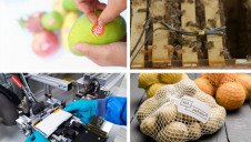 This week's best innovations could drive significant change across the food, shipping and automotive sectors