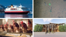 This week's innovations could help to decarbonise shipping, house those living in slums and feed our livestock more sustainably