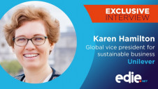 Karen Hamilton has served as Unilever's global VP for sustainable business for more than a decade