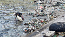 The Alliance will focus heavily on the prevention and clean up of plastics in rivers and oceans