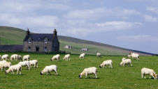 The report warns that climate change is already impacting farmers in the UK and Europe, as well as those further afield
