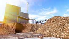 The report highlights the potential environmental impact of scaling up biomass supply chains