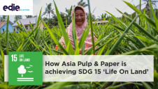 Through the lens of SDG 15, Asia Pulp & Paper is committed to  improving the livelihoods of the farmers and communities that it interacts with