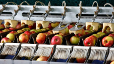 Currently, around 43,000 tonnes of surplus food is redistributed from retailers and food manufacturers every year, the government says