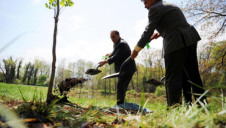 Yorkshire Water committed in 2018 to plant one million trees by 2028