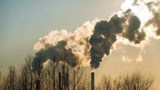 One-third of companies reported increased emissions