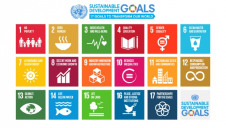 More than 9,000 companies have pledged to support the SDGs to date, but reporting is yet to be unified
