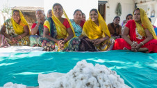 More male and female farmers will be added to the India and Pakistan programmes