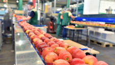Food waste was down on both an operational and supply chain basis. Stock image.