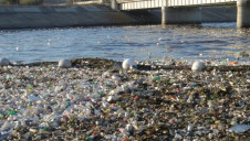 Pictured: Plastic pollution in Long Beach, California. Image: As You Sow