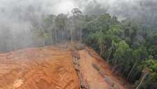 The rate of deforestation in the Amazon is the highest it's been in more than a decade