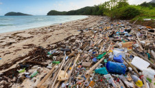 According to the Ellen MacArthur Foundation, there are more than 86 million tonnes of plastics in the oceans, with up to 12 million tonnes added each year