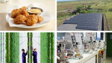 Browse our green innovation predictions for 2021