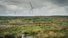 Pictured: Scotland's Whitelee wind farm